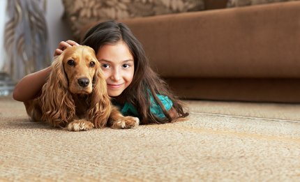Pet Odor Urine Central New York Mohawk Valley
